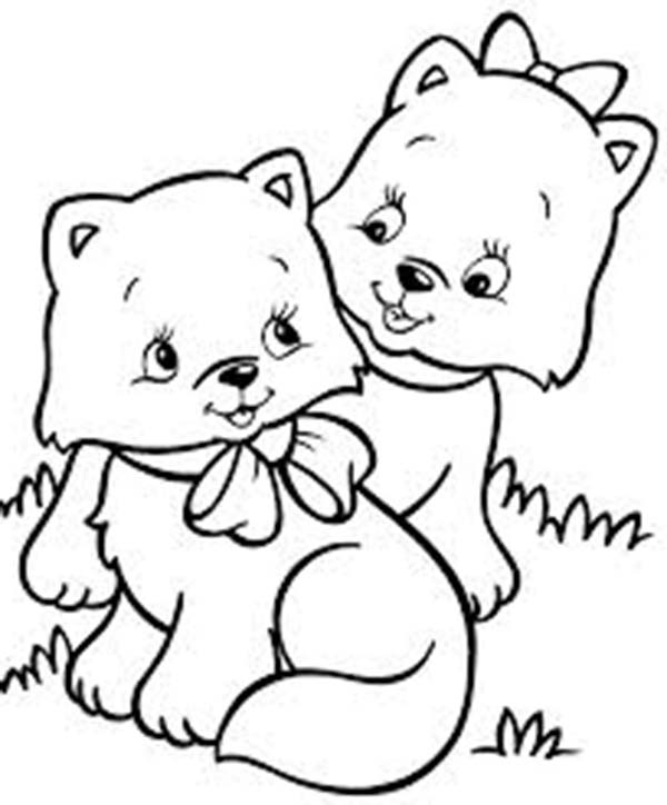 Kitty Cat, : Two Very Cute Kitty Cat in the  Park Coloring Page