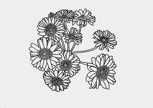 Flowers, : Amazing Picture of Flower Coloring Page