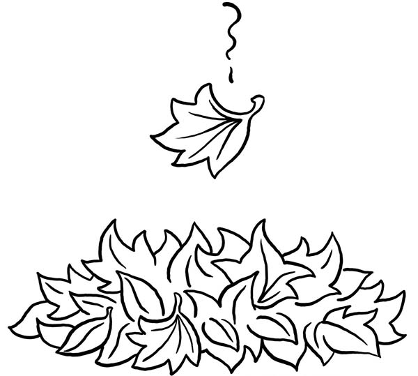 Fall Leaf, : Autumn Fall Leaf Season Coloring Page