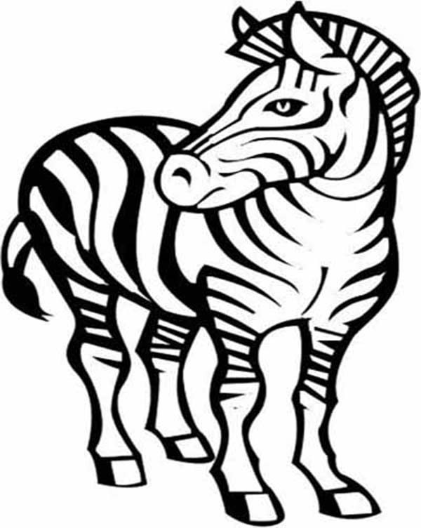 Zebra, : Awesome Zebra Drawing Coloring Page
