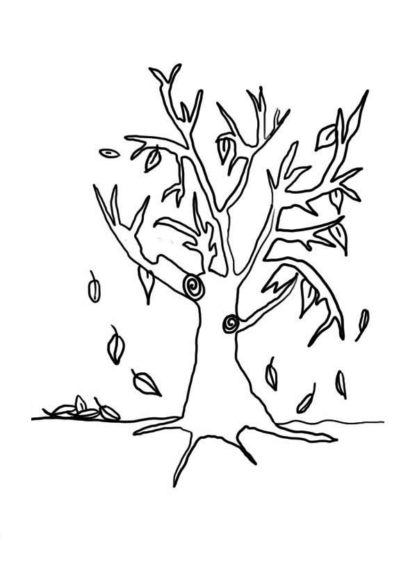 Fall Leaf, : Falling Leaves in Fall Leaf Coloring Page