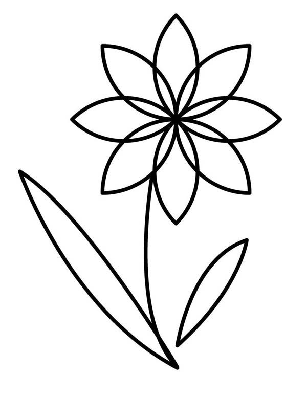 Flowers, : Flower Outline Coloring Page