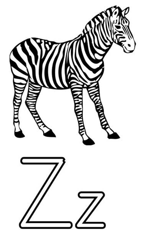 Zebra, : Letter Z is for Zebra Coloring Page