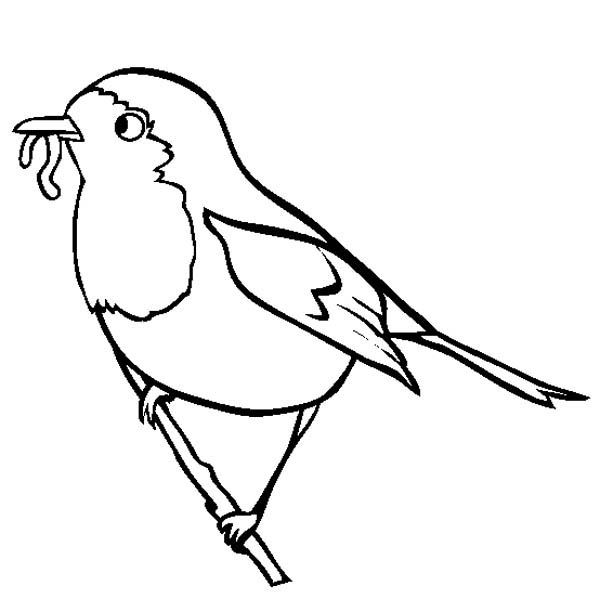 Robin, : Robin Eating Worm Coloring Page