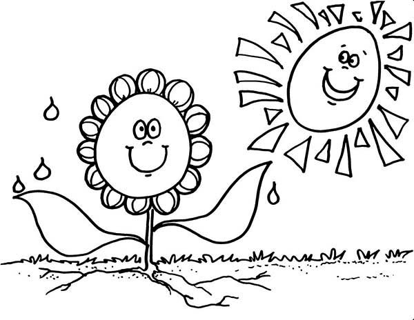 Flowers, : Smiling Sun Flower Coloring Page