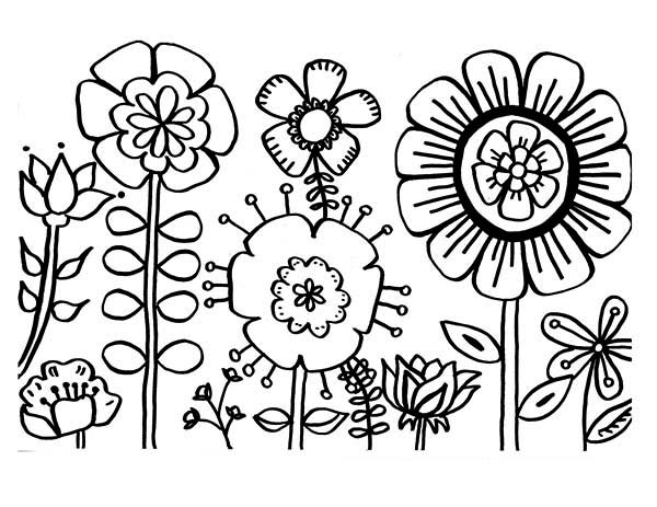 Flowers, : Various Type of Flower Coloring Page