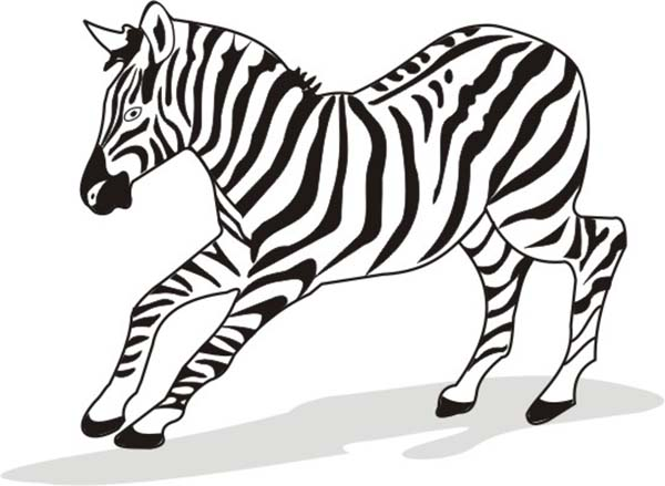 Zebra, : Zebra Running Like a Bolt Coloring Page