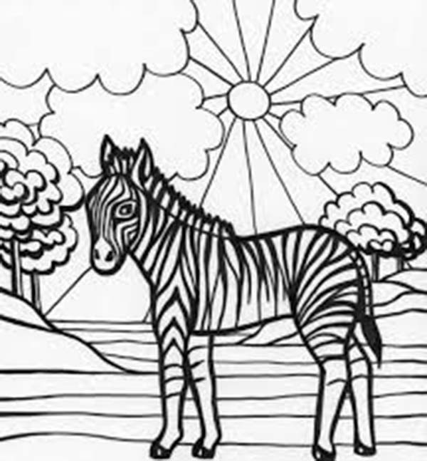 Zebra, : Zebra with Sun Background Coloring Page