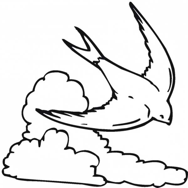 Clouds, : A Swallow Flying Over the Clouds Coloring Page