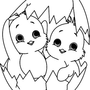 baby chick outline coloring pictures