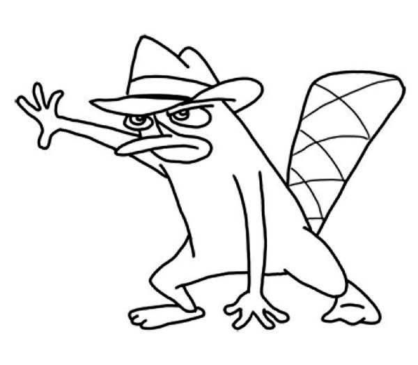 Phineas and Ferb, : Agent P Looking for Opportunity in Phineas and Ferb Coloring Page