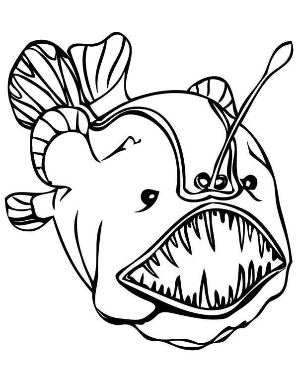 Sea Monster, : Anglerfish Sea Monster Coloring Page