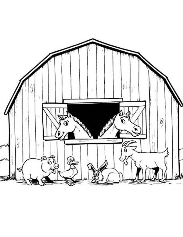 Farm Animal, : Animal Barnyard on Farm Animal Coloring Page