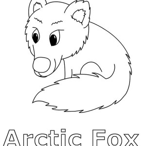 arctic fox is arctic animals coloring page - Baby Arctic Animals Coloring Pages