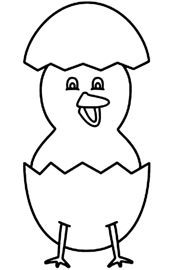 Baby Chick, : Baby Chick Standing with His Eggshell Coloring Page