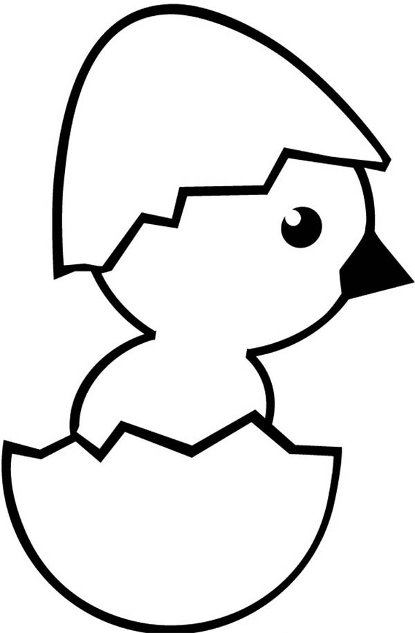 Baby Chick, : Baby Chick Wearing Eggshell Hat Coloring Page