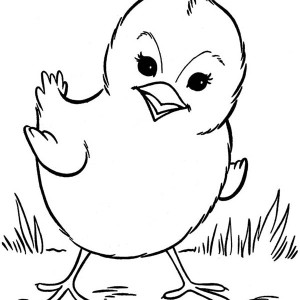 Stunning Chicken Coloring Book Images Coloring Page Design