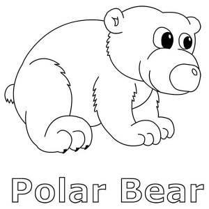 baby arctic animals coloring pages photo4 - Baby Arctic Animals Coloring Pages