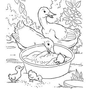 Mother Of Goose Try To Reach Fruit In Farm Animal Coloring Page
