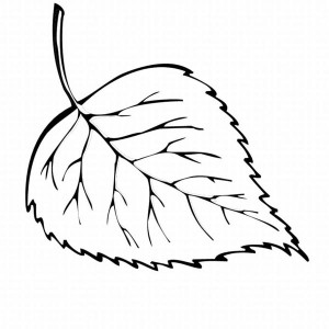 fall maple leaf coloring page