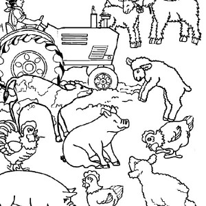 farm animal activities coloring page