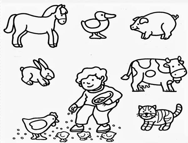 Farm Animal, : Feeding All Farm Animal Coloring Page