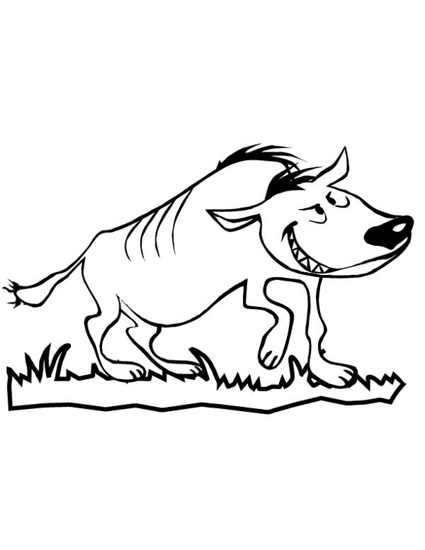 Hyena, : Funny Hyena Coloring Page