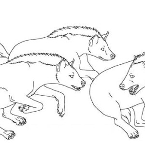 hyena chasing each other coloring page