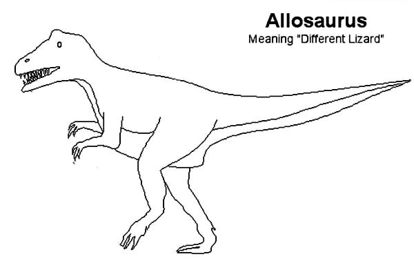 Allosaurus, : Kids Drawing of Allosaurus Coloring Page