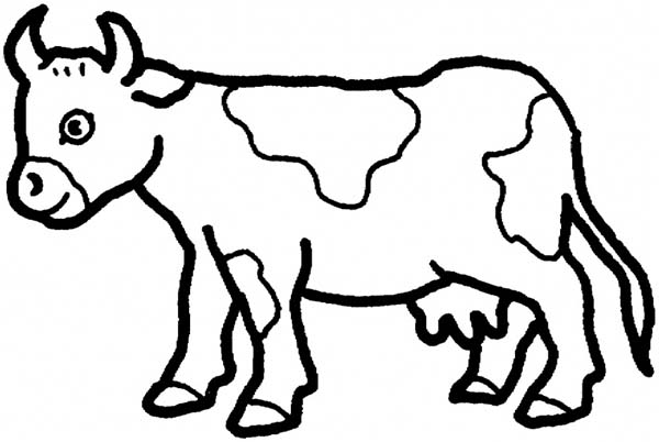 Cow, : Long Horn Cow Coloring Page
