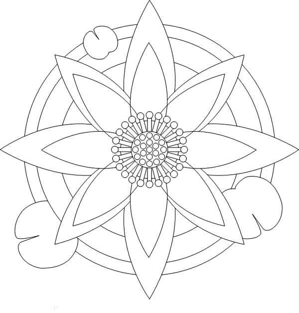 Lotus Flower, : Lotus Flower Devian Art Coloring Page