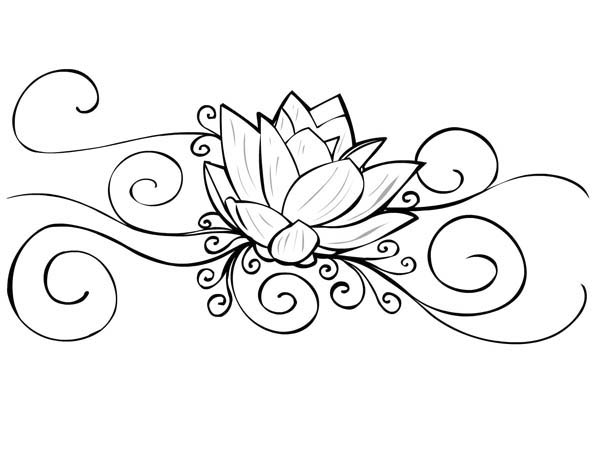 Lotus Flower, : Lotus Flower Picture for Tattoo Coloring Page