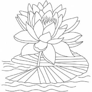 Tattoo images lotus flower lyrics