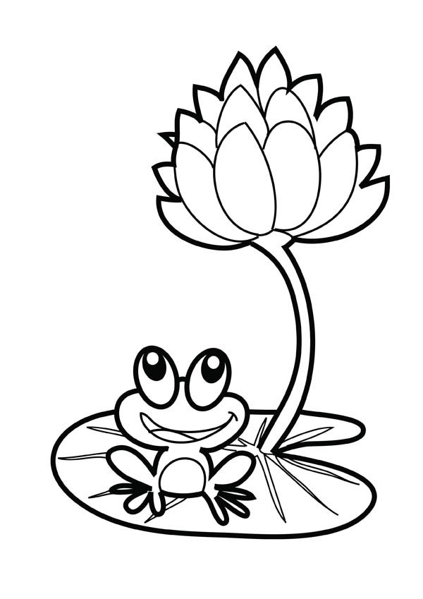 Lotus Flower, : Lotus Flower and a Frog Coloring Page