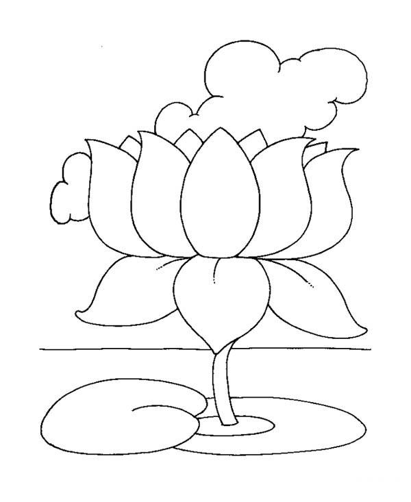 Lotus Flower, : Lotus Flower is a Symbol of Awakening Coloring Page