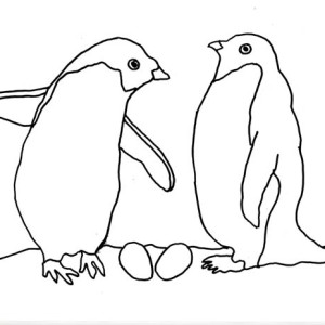 penguin couple in arctic animals coloring page - Baby Arctic Animals Coloring Pages