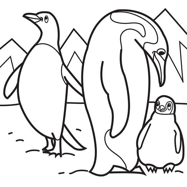 Arctic Animals, : Penguin Parent Teaching Their Baby in Arctic Animals Coloring Page