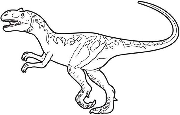 Allosaurus, : Picture of Allosaurus Coloring Page