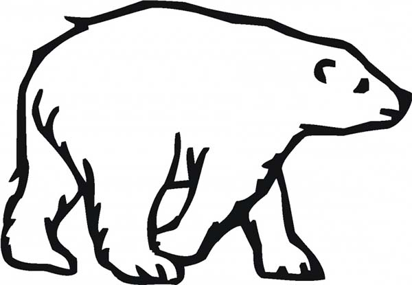 Arctic Animals, : Picture of Arctic Animals Polar Bear Coloring Page
