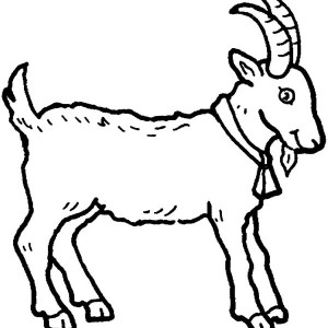 Farm Animal Coloring Page Affordable Wwwcoloring Farm Animal