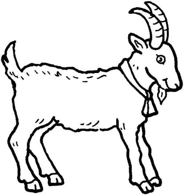 g for goat coloring pages - photo #22