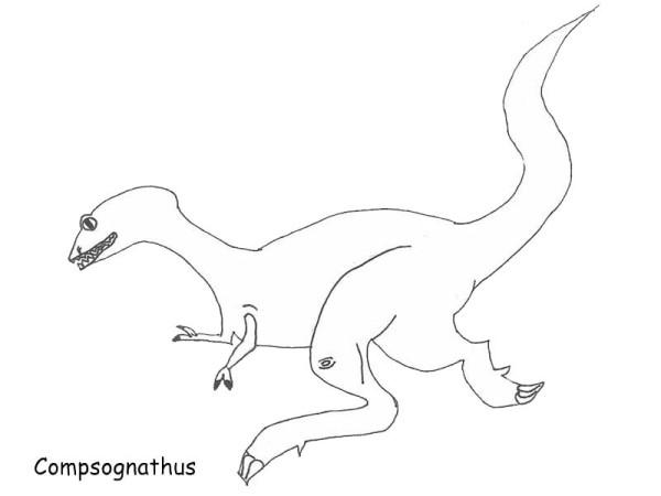 Allosaurus, : Pre History Predator Allosaurus Coloring Page