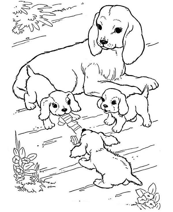 Farm Animal, : Puppies are Playing with Their Mother in Farm Animal Coloring Page