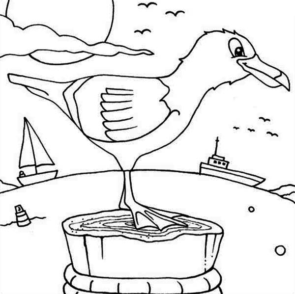Seagull, : Seagull at Bay Coloring Page
