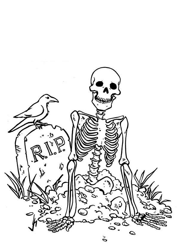 skeleton came from grave coloring page