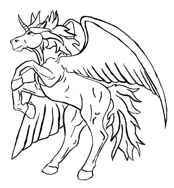 Pegasus, : Unicorn Pegasus Coloring Page