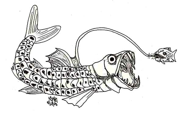 Sea Monster, : Viperfish Sea Monster Coloring Page