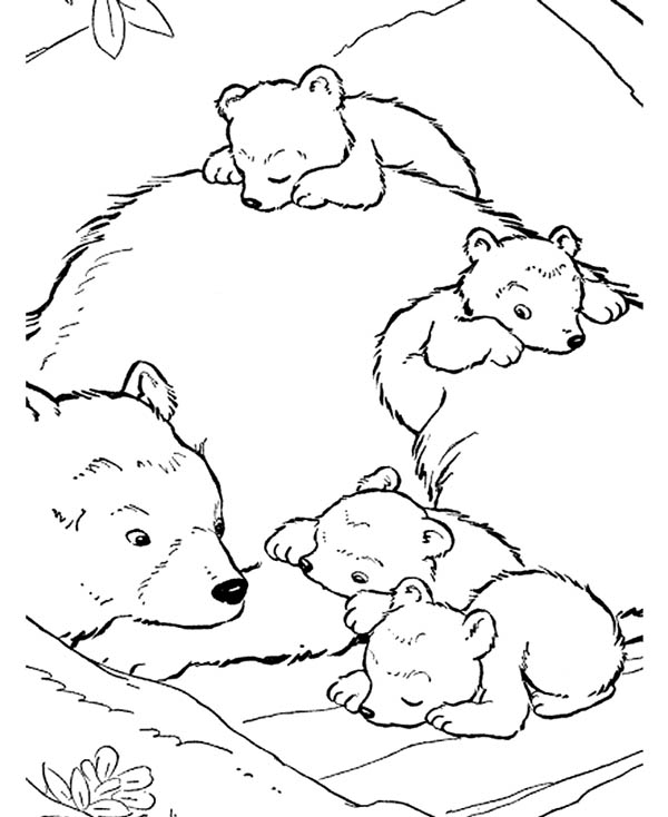 Polar Bear, : Baby Polar Bear and Their Mother Coloring Page