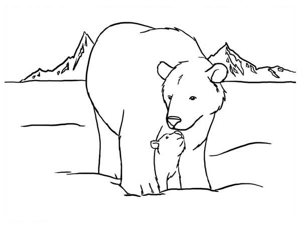 Polar Bear, : Polar Bear Kiss Her Baby Coloring Page