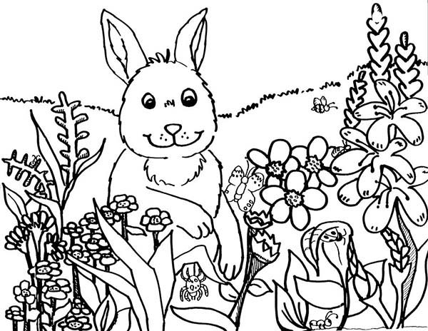Rabbit and Flowers in Spring Coloring Page | Kids Play Color